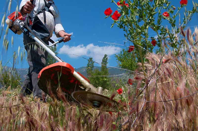 草刈り機使用イメージ